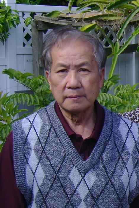 Trần V Nam